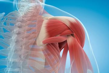 atrofija mišic